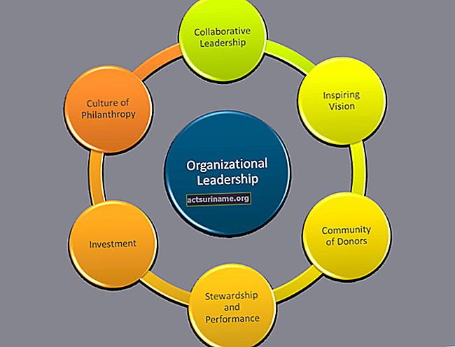 10 качеств хорошего менеджера в некоммерческой организации