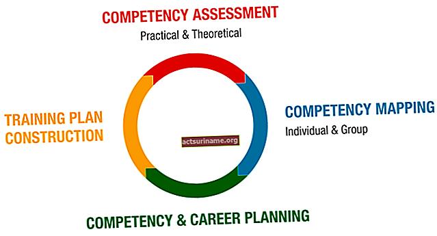 Mappatura delle competenze nei progetti HR