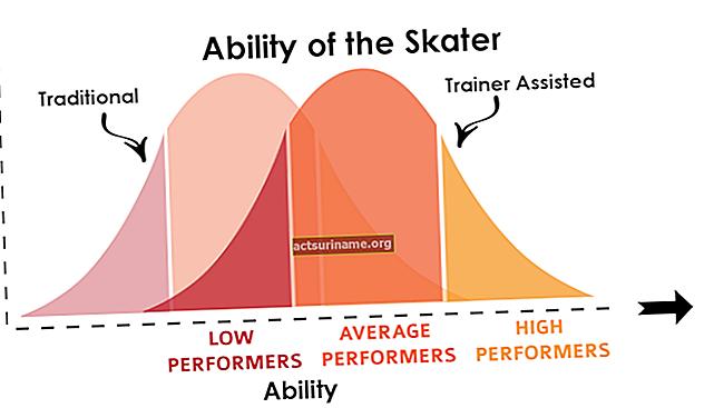 Recensioni delle prestazioni e curve a campana