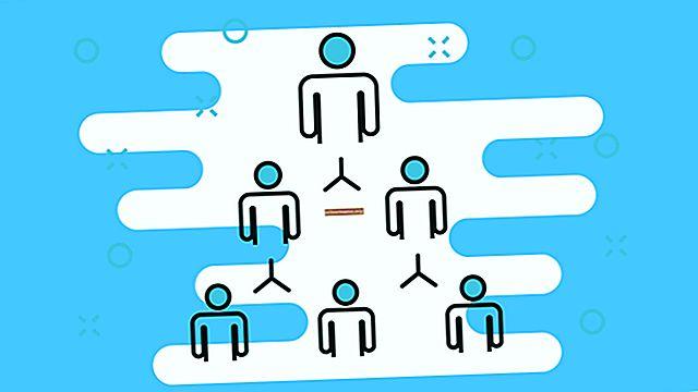 Какви широки функции изпълнява управлението на организацията?